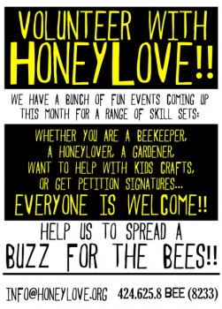 HoneyLove - Volunteer!