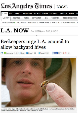 LA Times article about backyard beekeeping