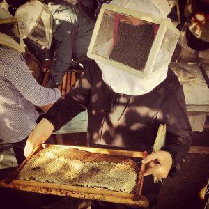 Egypt_beekeeper