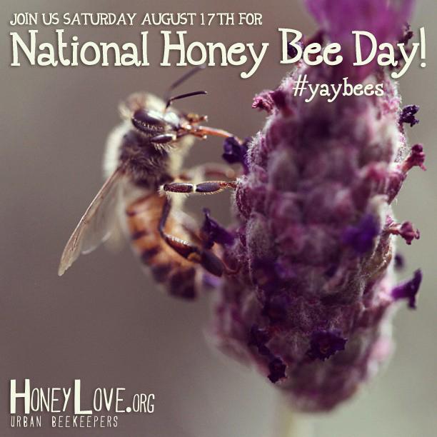 honeybeedaybee